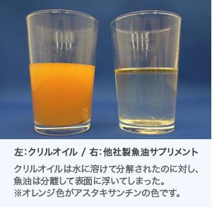 左:クリルオイル / 右:他社製魚油サプリメント クリルオイルは水に溶けて分解されたのに対し、魚油は分離して表面に浮いてしまった。※オレンジ色がアスタキサンチンの色です。